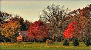 Wisconsin 2