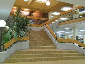 Golden_Library_at_Eastern_New_Mexico_University (1)